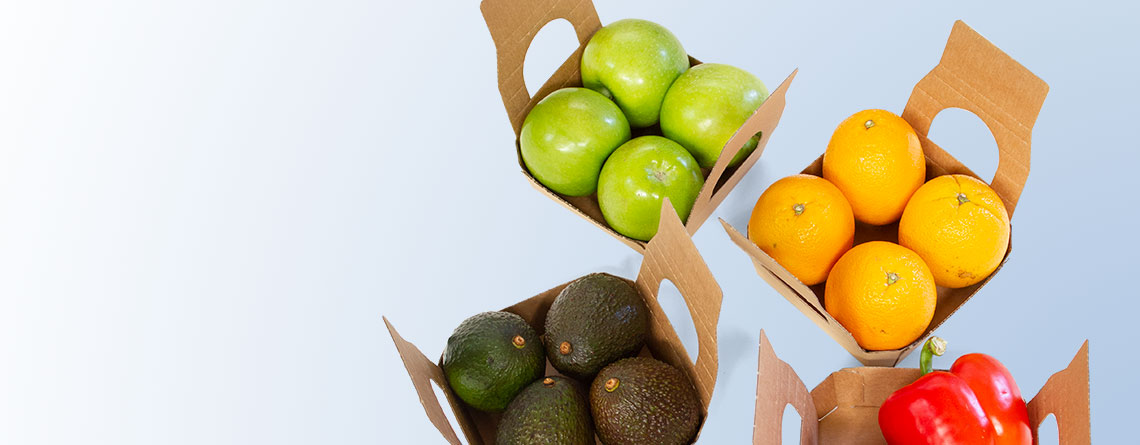 SIKA fruit <h2 class='subtitle'>Sustainable protection<br>just like packaged by hand</h2>